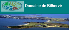 MAJESTIC_Events_DJ_Mariage_Bretagne_Logo_Bilherve