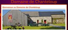 MAJESTIC_Events_DJ_Mariage_Bretagne_Logo_Chanteloup